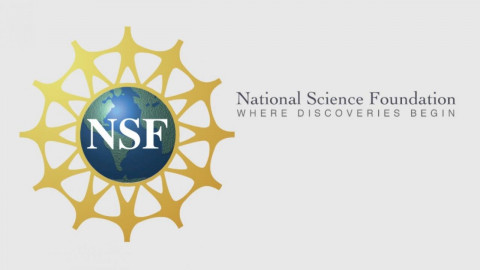 National Science Foundation Research Experiences for Undergraduates (REU)