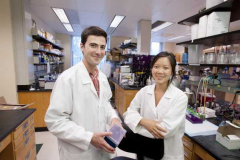 NSF-REU scholars Joshua Roden and Finnerty Hu in lab in Foran Hall