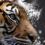 TigerRisk Partners LLC logo