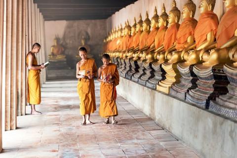 Tibetan Studies: Global Health, Social Justice, and Tibetan Buddhist Culture in India