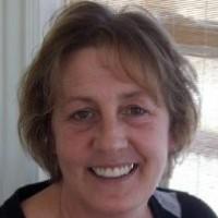 Carol Stier